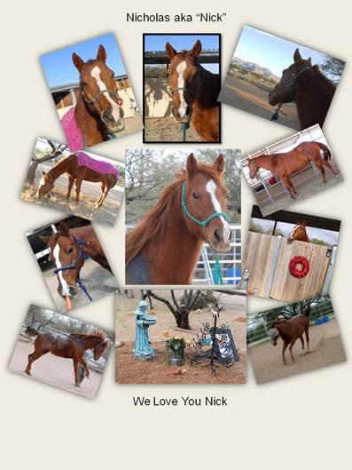 Nicholas aka Nick