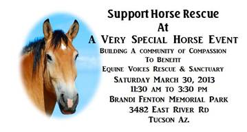 A VERY SPECIAL HORSE EVENT!