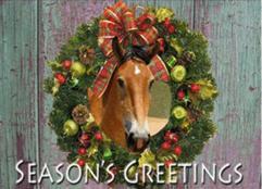 Season Greeting from Gulliver