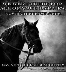 Overturn the Legalization of Horse Slaughter