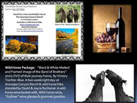 http://www.equinevoices.org/images/auction/wild-horse-package-3.jpg